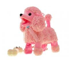 Chodiaci pes ružový